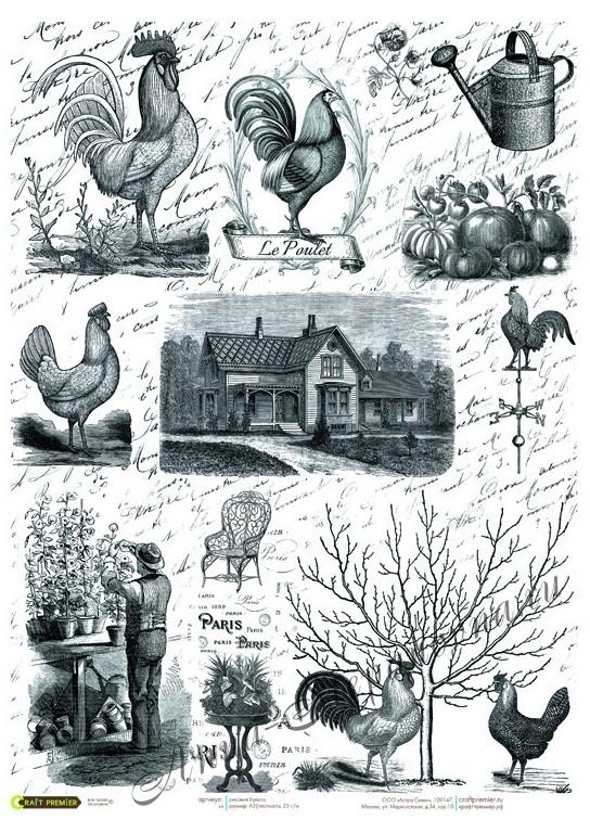 Рисовая карта «Сад с петухами»