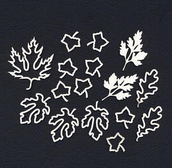 Чипборд «Листья ассорти»