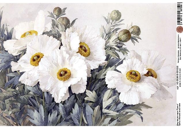 Декупажная карта Цветы с белыми лепестками
