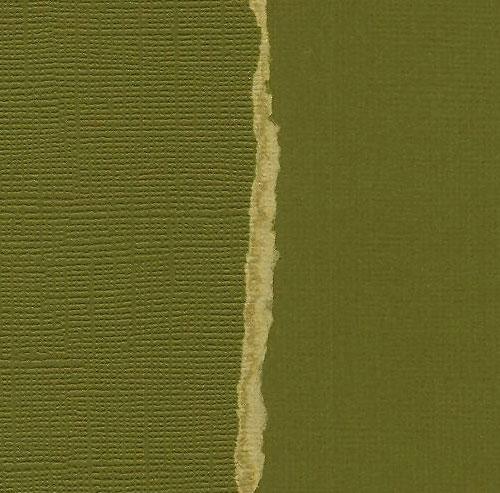 Кардсток Темно-оливковый однотонный