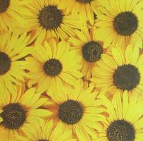 Салфетка для декупажа «Желтые цветы»