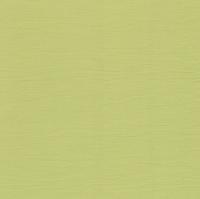 Кардсток «Оливковый»