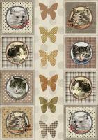 Рисовая бумага «Восемь котов»