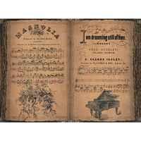 Рисовая бумага «Нотная книга»