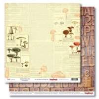 Бумага «В лесу. Справочник грибника»