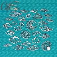 Чипборд «Морские раковины» №1