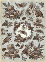 Рисовая карта «Совы и шишки»