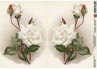 Декупажная карта Белые розы. Пара.