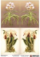 Декупажная карта Старинные орхидеи