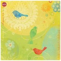 Бумага Яркие птицы K&Company