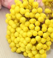 Ягоды на проволоке желтые Мимоза
