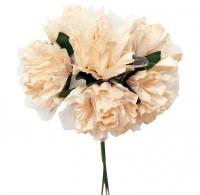 Цветы  Персиковые нежные