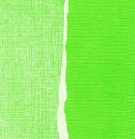 Кардсток Лайм (ярко-салатовый) однотонный