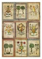 Рисовая бумага «Средневековая ботаника»