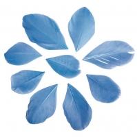 Перья обрезанные голубые