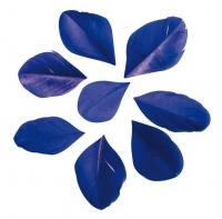 Перья обрезанные синие