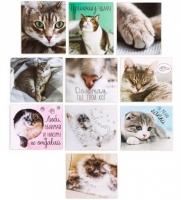 Набор наклеек Дом там, где твой кот