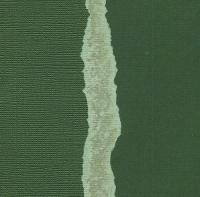 Кардсток Темно-зеленый однотонный