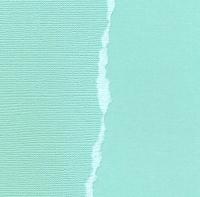 Кардсток Ледяной однотонный