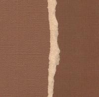 Кардсток Красно-коричневый однотонный