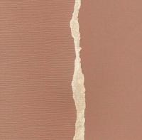 Кардсток Светло-коричневый однотонный