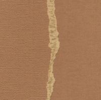 Кардсток «Коричневый натуральный» однотонный
