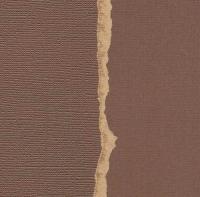 Кардсток  «Темно-коричневый» однотонный