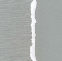 Кардсток «Светло-серый» однотонный