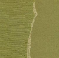 Кардсток Оливковый однотонный