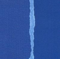 Кардсток Королевский синий однотонный