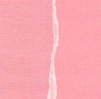 Кардсток Темно-розовый однотонный