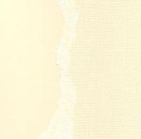 Кардсток Ванильный крем однотонный