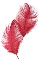 Перо страусиное темн.-красное