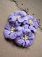 Цветы «Таинственный сад» бумажные